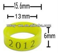 2013 Top Cheap new elastic plastic bird leg ring
