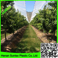 200 micron greenhouse plastic film/greenhouse covering film/fruit protection film