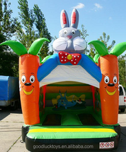 bouncy slide /juegos inflables