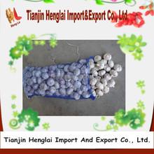 import garlic price pure white garlic 1