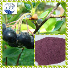 Acai Berry & Green Tea supplement