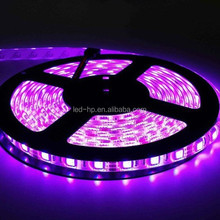 Epistar flexible LED strip 5050 300LEDs,single color, gallery led track lighting,high quality
