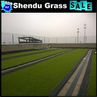 SBR latex backing artificial grass for tennis