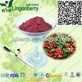 Jugo de arándano rojo en polvo/lingonberry jugo