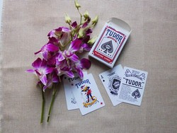 the premium quality standard playing cards for casino