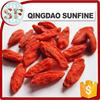 2015 new crop ningxia organic goji berry on sale Lycium seed free sample goji berry price