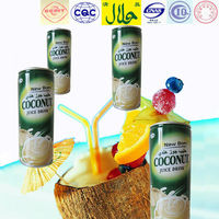 kelapa squash new filling soft drink in tin 240ml