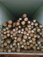 Pine round logs