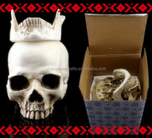 Realistic Medical Human Skull Replica Model For Home Or Office Decoration and Collection skulls for crafts