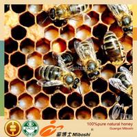 China natrual pure black forest honey