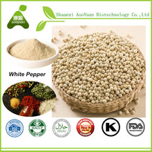 Hot Selling 100% Natural and Pure Dried White Pepper Piperine Powder