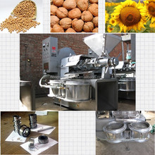 Automatic electric high quality make cold pressed oil
