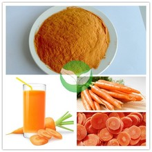 GMP manufacturer produce best quality natural carrot powder