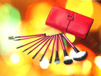 11 Piece Red Make up Mineral Brush emily makeup brush