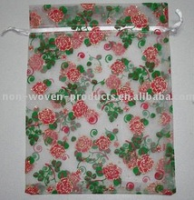 2012 Promotional Gift Bag for Packing