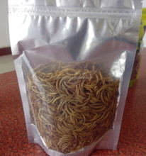 Pet Food Microwave Dried 2.8 cm High Protein Mealworms