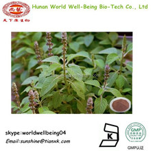 foskolin extract powder 10%/ coleus forskohlii extract /FRSK powder 20%