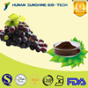 2015 Hot Sale Organic Grape Seed Extract / Proanthocyanidin for Anti-radiation & Eliminating free radicals