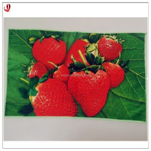 Promotion Standard Printed Microfiber Fabric Kitchen Towel