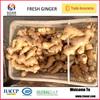2014 Chinese bulk fresh ginger