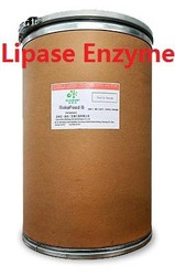 good quality of lipase enzymes uses for animal feed additive and pulp and paper industry