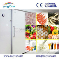 solar power system cold room/commercial refrigerated freezer room