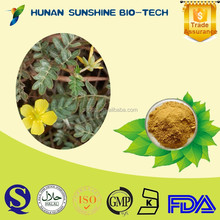 wholesale chinese herbal medicine 100% natural herb Saponins Tribulus Terrestris P.E. Powder with eye protection function