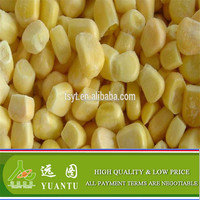 IQF Frozen Sweet Corn Cob and Kernel With Cheap Price On Sale