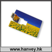 credit card usb,plastic 4gb usb flash drives