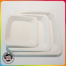 High Quality Different Size Biodegradable Sugar Cane Eco Bagasse Pulp Square Plate