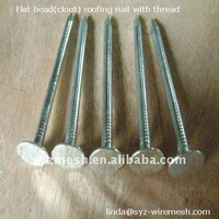 Bright flat caps galvanized roofing nails ISO9001