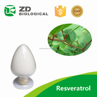 Water Soluble Giant Knotweed Extract Resveratrol