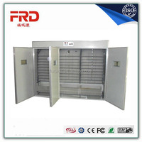 Commercial Industrial Factory Supply 6000pcs Chicken Egg Incubator/6000pcs Egg Hatchery