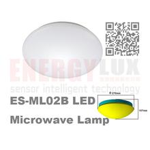 MICROWAVE SENSOR CEILING LAMP (glass cover)
