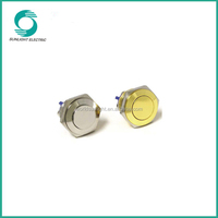 16mm new ik08 momentary brass round high quality dot illuminated waterproof electrical push button switch