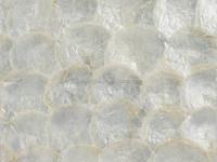 New arrival Silver Capiz shell wallpaper