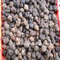 frozen Tuber Indicum truffle from China