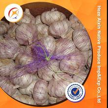 Fresh White Garlic In China Garlic City