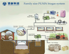 PUXIN 10m3 small size biogas digester for animal manure treatment