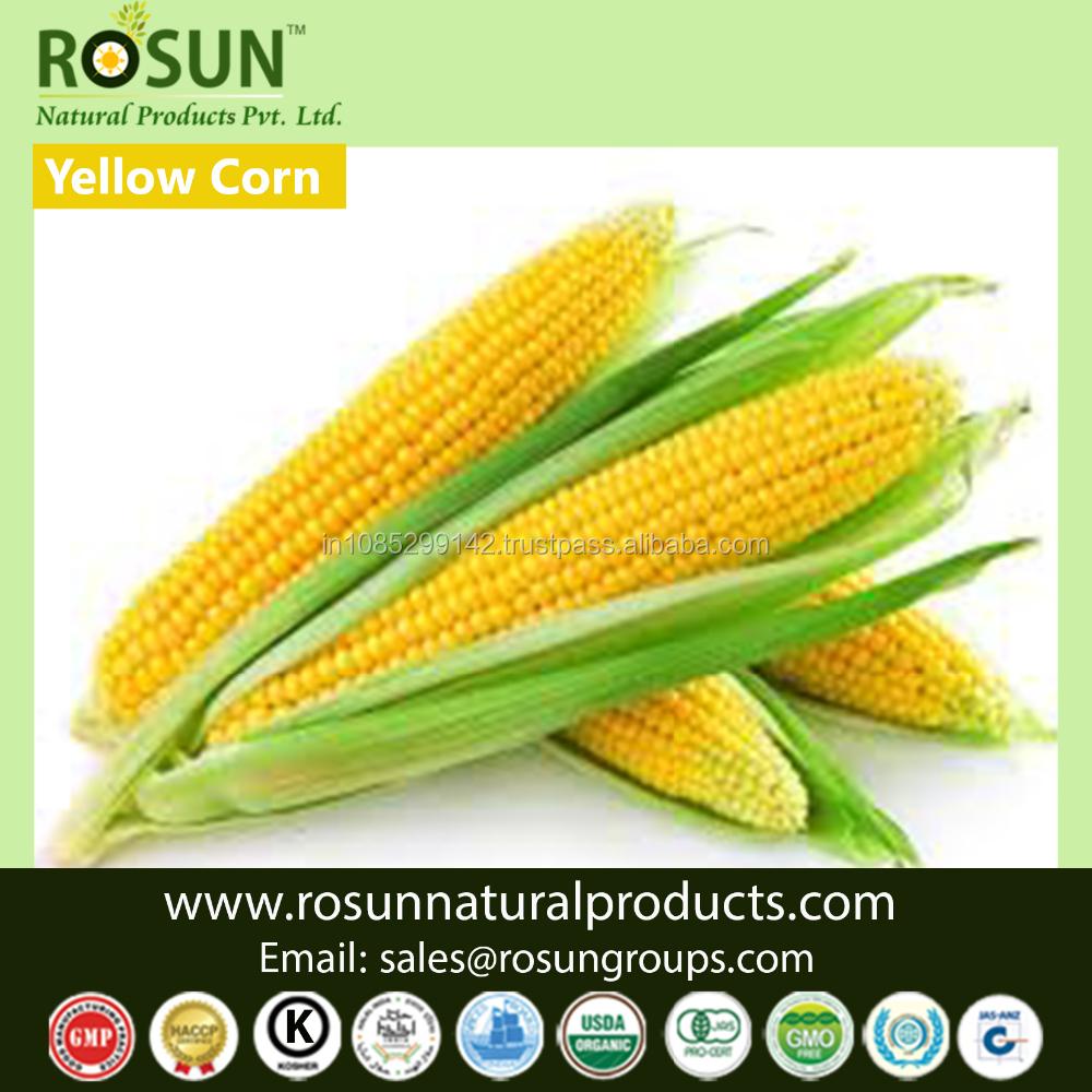 Rosun Natural Products