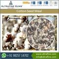 farinha de semente de algodão para animais
