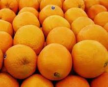 2015 HARVEST Valencia Orange,Fresh Lemon ,fresh Mandarine Citrus Fruits High Quality and Wholesale Prices From Turkey