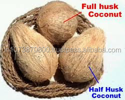 Pollachi Semi Husked coconuts for France