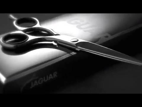 jagua3.jpg