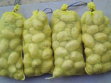 fresh potato with mesh bag or carton packing for sale