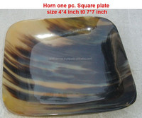 Real Horn Dishes and Glass