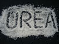 Factory Price Nitrogen Fertilizer Prilled 46% Urea