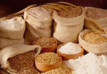 Top quality Wheat flour best price