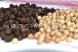 Black and White Pepper,Ginger,Garlics