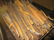 Split Cassia from Vietnam with highest quality at bottom price